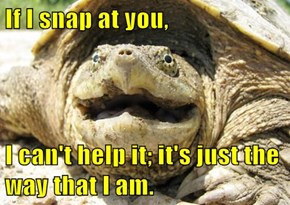 The Snapping Turtle's Curse