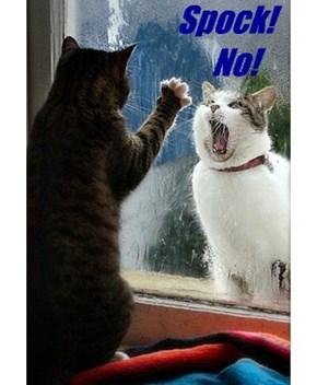 Spock!    No!