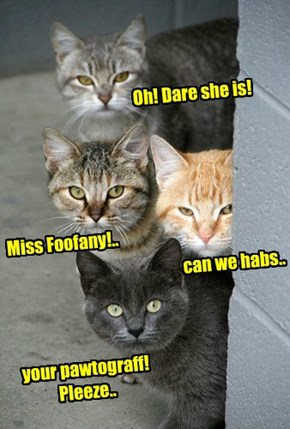 At teh Sushi Olimpix, som Russian kitties wait for Foofany to walks by so dey can ask for her pawtograff..