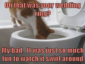 Oh that was your wedding ring?  My bad.  It was just so much fun to watch it swirl around