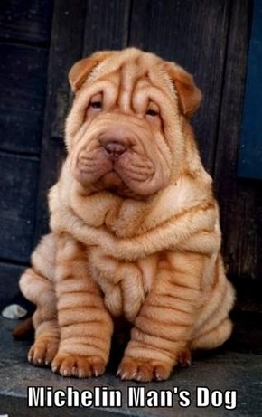 Michelin Man's Dog