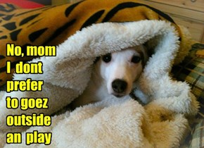 No, mom I  dont  prefer  to goez  outside  an  play