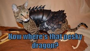 Now where's that pesky dragon?