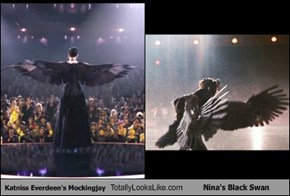 Katniss Everdeen's Mockingjay Totally Looks Like Nina's Black Swan