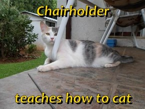 Chairholder  teaches how to cat