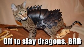 Off to slay dragons. BRB