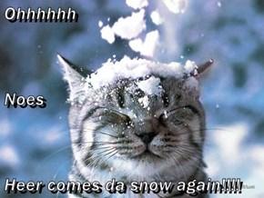 Ohhhhhh Noes Heer comes da snow again!!!!