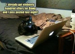 I already got elebenty hundred offers for Dawg and I juss posted last night!