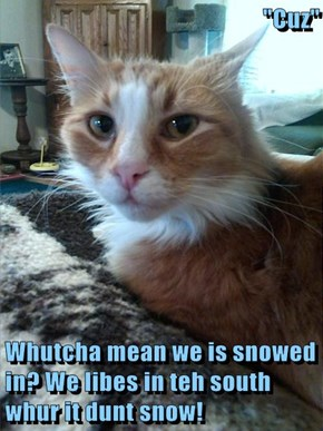 """Cuz""  Whutcha mean we is snowed in? We libes in teh south whur it dunt snow!"
