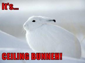 It's...  CEILING BUNNEH!