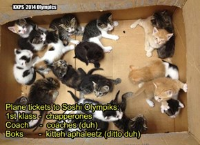 Plane tickets to Soshi Olympiks: 1st klass -  chapperones Coach     -  coaches (duh) Boks       -  kitteh aphaleetz (ditto duh)