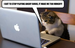 I GOT TO STOP PLAYING ANGRY BIRDS, IT MAKE ME TOO HUNGRY!