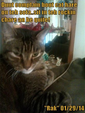 """Dunt complain bout cat hare on teh sofa..sit in teh rockin chare an be quite!  """"Rak"""" 01/29/14"""