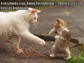 Everybody was Kung Fu fighting.....Them cats was fast as lightning