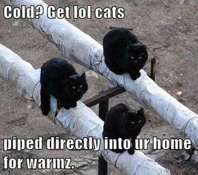 Cold? Get lol cats  piped directly into ur home for warmz.
