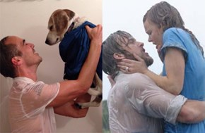 Office Hijinks of the Day: This Guy Uses His Boss's Dog to Recreate Iconic Scenes From Movies