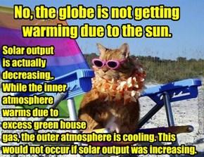 Kittehz Climate Change Crash Course
