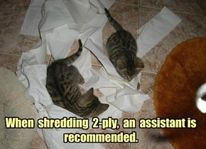When  shredding  2-ply,  an  assistant is recommended.