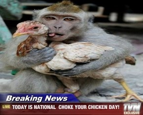 Breaking News - TODAY IS NATIONAL  CHOKE YOUR CHICKEN DAY!