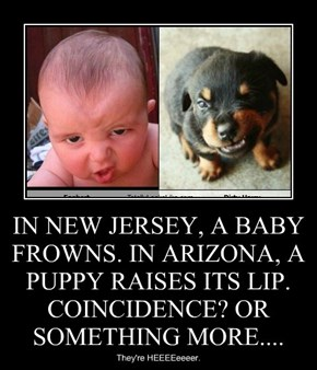 IN NEW JERSEY, A BABY FROWNS. IN ARIZONA, A PUPPY RAISES ITS LIP. COINCIDENCE? OR SOMETHING MORE....