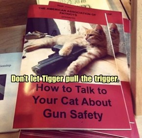 Don't  let  Tigger  pull  the  trigger.