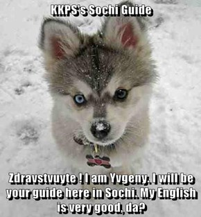 KKPS's Sochi Guide  Zdravstvuyte ! I am Yvgeny. I will be your guide here in Sochi. My English is very good, da?