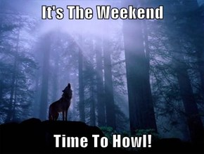 It's The Weekend  Time To Howl!