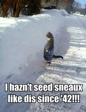 I hazn't seed sneaux like dis since '42!!!