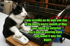 I waz scrollin on da web one day . . .  In da merry merry month of May . . . I waz taken by surprise . . . by a pair of peering eyes . . .  and found it was the  NSA!!!