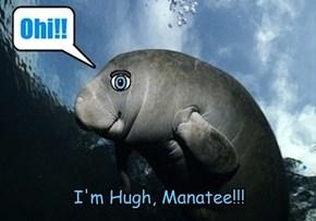 I'm Hugh, Manatee!!!