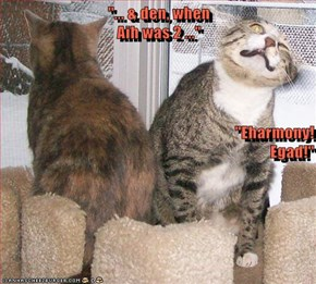 """... & den, when                                                                               Aih was 2 ..."" ""Eharmony!                                                                      Egad!"""