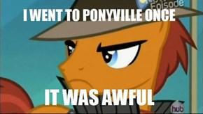 Grumpy Pony