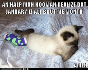 AN HALP MAH HOOMAN REALIZE DAT JANUARY IZ ALL BOUT ME MONTH  AMEN