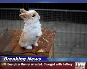 Breaking News - Energizer Bunny arrested. Charged with battery.