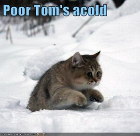 Poor Tom's acold