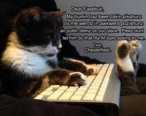 Dear Fasebuk,