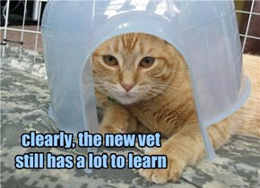 clearly, the new vet still has a lot to learn