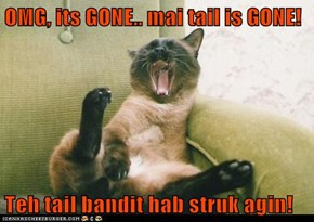 OMG, its GONE.. mai tail is GONE!  Teh tail bandit hab struk agin!