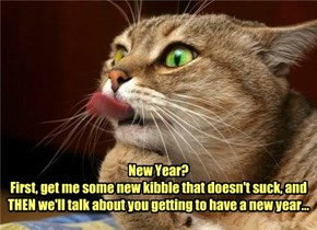 New Year? First, get me some new kibble that doesn't suck, and THEN we'll talk about you getting to have a new year...