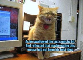 As he swallowed the last crunchy bit, Red reflected that maybe eating this mouse had not been his best idea.