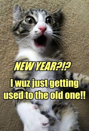 NEW YEAR?!?
