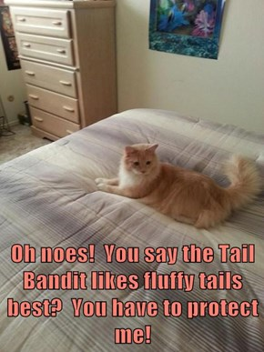 Oh noes!  You say the Tail Bandit likes fluffy tails best?  You have to protect me!