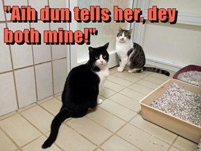"""Aih dun tells her, dey both mine!"""