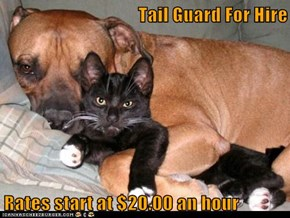 Tail Guard For Hire  Rates start at $20.00 an hour