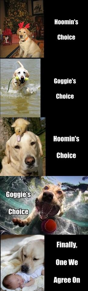 Hoomin and goggie take turns choosing poses