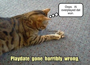Playdate  gone  horribly  wrong.