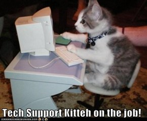 Tech Support Kitteh on the job!