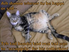 "Aih dunno whever tu be happi or sad--  Teh tail bandit taid mai tail wus tu ""scraggely"" fer his collection!"