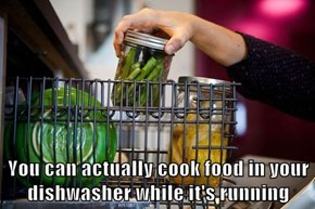 You can actually cook food in your dishwasher while it's running