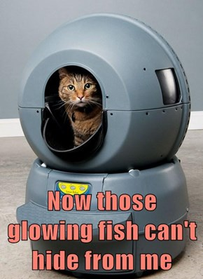 Now those glowing fish can't hide from me